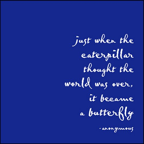 01515ea5b9ecd Just When The Caterpillar Thought The World was Over Quotable magnet -  Healing Baskets