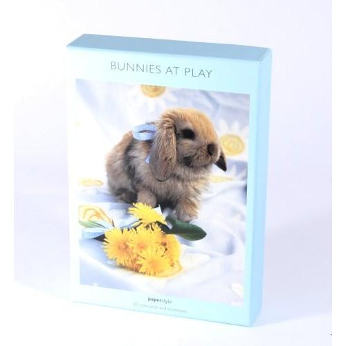 Bunnies At Play Notecards