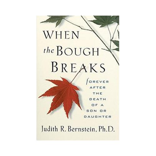 When The Bough Breaks - Forever After The Death of a Son or Daughter