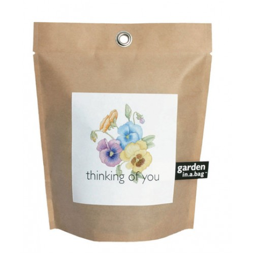 Garden in a bag. Thinking of you!